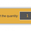 Adding a quantity input field to the product information page